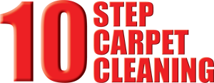 Modern Carpet Cleaning's 10 Step Process